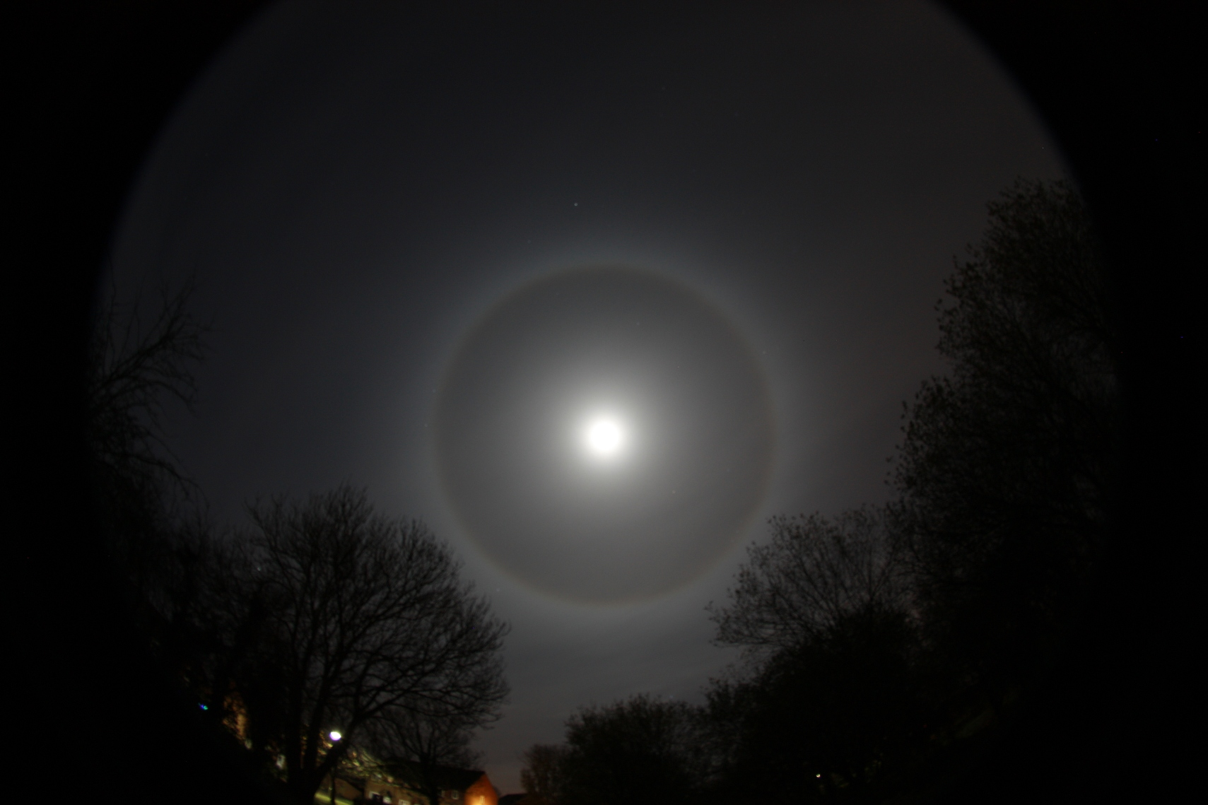 Moon Halo 8 Dec 2014
